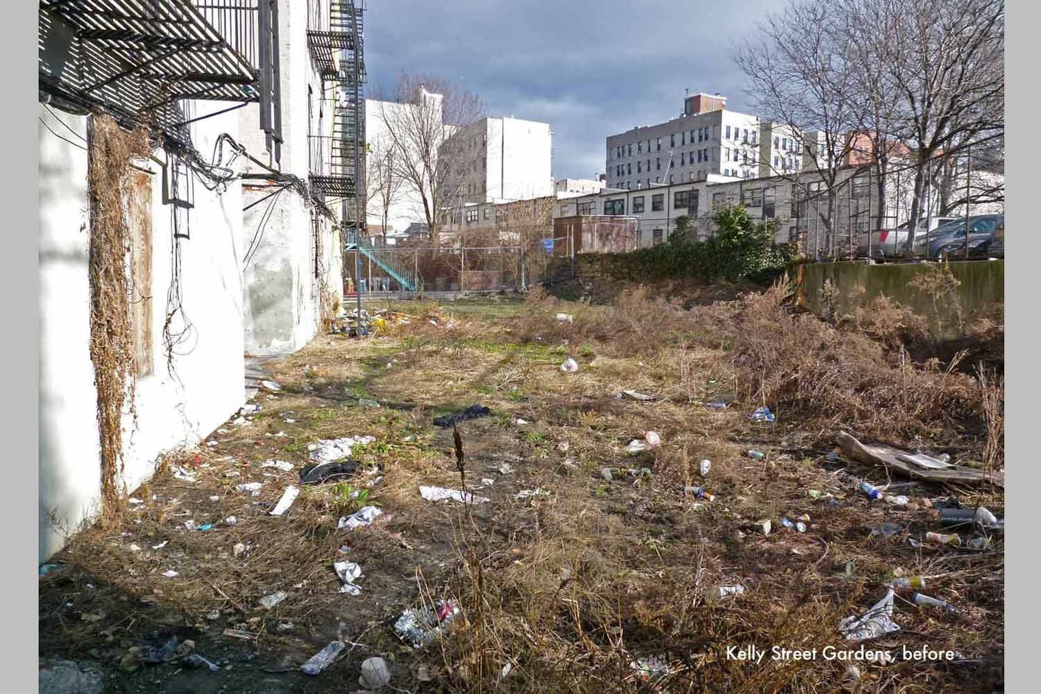 Before rehab and convertion into a garden, this valuable community asset lay fallow and full of trash.