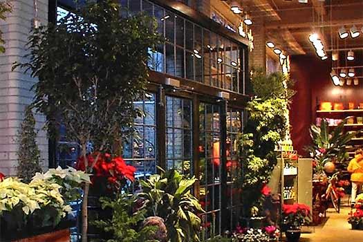 Chelsea Garden Center