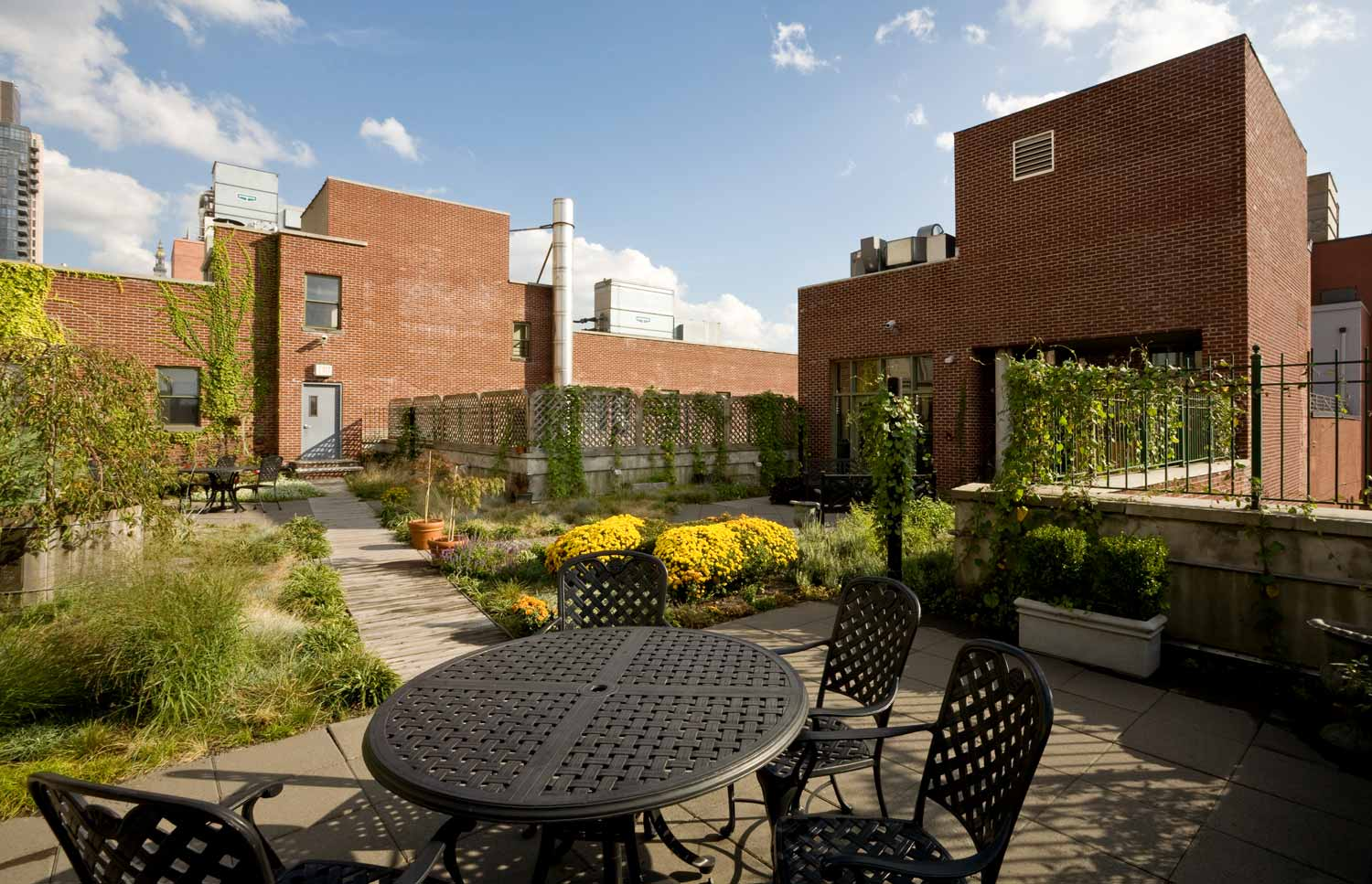 The green roof is one of the first of it's kind for supportive housing in NYC.